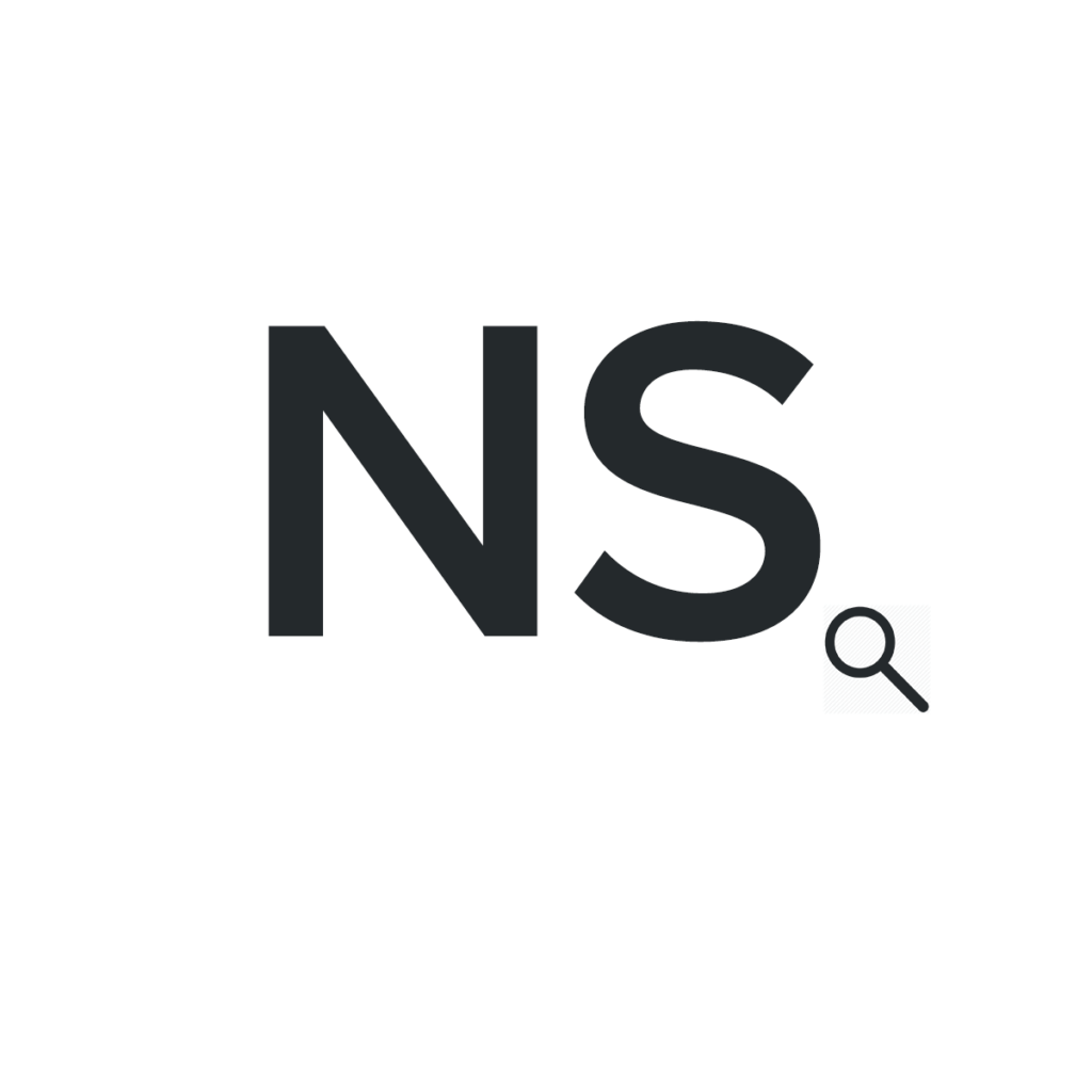 nett solutions logo white